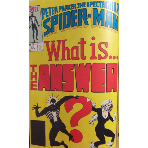 spider-view-and-the-answer-is-1